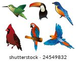 birds vector illustration | Shutterstock .eps vector #24549832