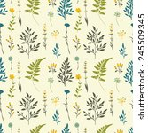 retro seamless pattern with... | Shutterstock .eps vector #245509345