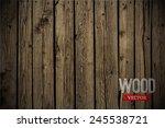 vector wood texture. background ... | Shutterstock .eps vector #245538721