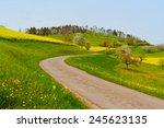 Asphalt Road Between Green And...