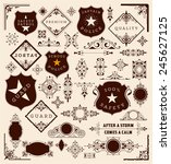 design elements ready to use | Shutterstock .eps vector #245627125