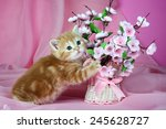 kitten with flowers on pink... | Shutterstock . vector #245628727