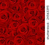 Stock photo red rose background 24563395