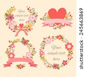 stylish floral design elements. ... | Shutterstock .eps vector #245663869