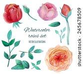 watercolor garden roses...   Shutterstock .eps vector #245678509