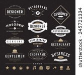 retro vintage insignias or... | Shutterstock .eps vector #245721334