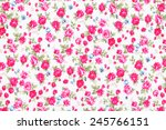 vintage style of tapestry... | Shutterstock . vector #245766151