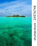 abstract tropical island in... | Shutterstock . vector #24576748