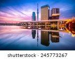 tokyo  japan skyline on the...   Shutterstock . vector #245773267