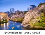 tokyo  japan at chidorigafuchi... | Shutterstock . vector #245773435