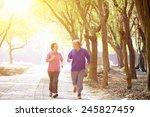 happy senior couple exercising... | Shutterstock . vector #245827459