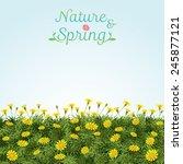 flowers spring field season... | Shutterstock .eps vector #245877121