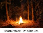 Fire Burning At Night In A...