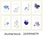hand drawn collection of... | Shutterstock .eps vector #245994079