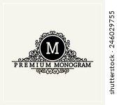 stylish  graceful monogram  ...   Shutterstock .eps vector #246029755