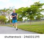 full length of senior man in... | Shutterstock . vector #246031195