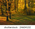 autumn in the park | Shutterstock . vector #24604132