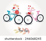 two bicycles one with flowers... | Shutterstock .eps vector #246068245