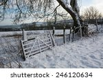 Field Gate In The Snow
