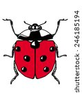 contour ladybug on a white... | Shutterstock .eps vector #246185194