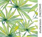 vector abstract watercolor... | Shutterstock .eps vector #246225445