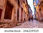 cozy and narrow streets in... | Shutterstock . vector #246229525