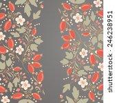 barberry border  hand drawn... | Shutterstock .eps vector #246238951