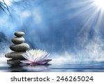 purity in the zen massage   Shutterstock . vector #246265024