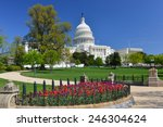 Stock photo washington dc in spring us capitol and tulips 246304624