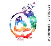 vector rainbow watercolor label ... | Shutterstock .eps vector #246407191
