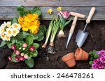 Planting Flowers In Pot With...