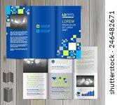 blue brochure template design... | Shutterstock .eps vector #246482671