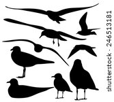 set of sea gull silhouette ... | Shutterstock .eps vector #246513181