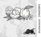 hand drawn decorative peach... | Shutterstock . vector #246603841