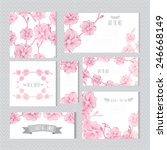 elegant cards with decorative... | Shutterstock .eps vector #246668149
