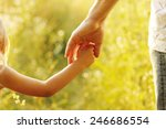 a parent holds the hand of a... | Shutterstock . vector #246686554