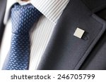 badge on the lapel of his... | Shutterstock . vector #246705799