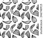 hand drawn vector seamless...   Shutterstock .eps vector #246748915