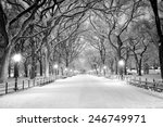 the mall in central park  nyc ... | Shutterstock . vector #246749971