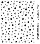 seamless pattern with black... | Shutterstock .eps vector #246803749