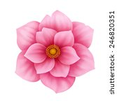 anemone pink flower decorative... | Shutterstock . vector #246820351