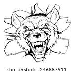 an illustration of a cartoon... | Shutterstock .eps vector #246887911