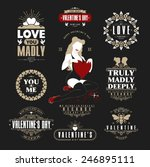 retro vintage insignias or... | Shutterstock .eps vector #246895111