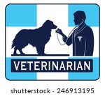 veterinary with dog graphic is... | Shutterstock .eps vector #246913195
