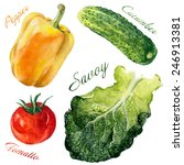 Watercolor Vegetables Set From...