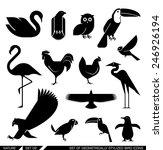 Set Of Various Bird Icons  Swan ...