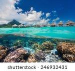 beautiful coral garden under...   Shutterstock . vector #246932431
