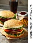 fresh burgers on grey wooden...   Shutterstock . vector #246967975