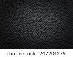 black background   Shutterstock . vector #247204279