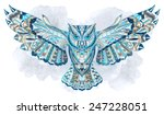 patterned owl on the grunge... | Shutterstock .eps vector #247228051